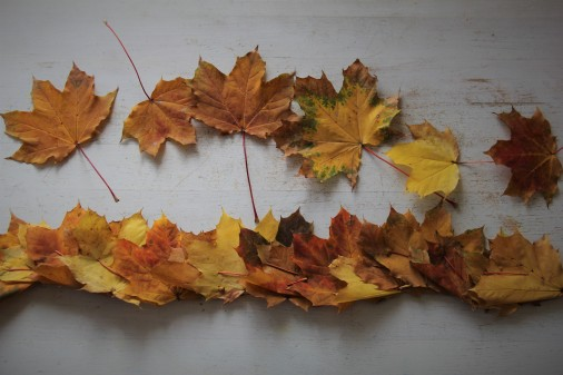 Blätterkrone